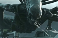 Xenomorph Of Alien Movie Franchise  Photo By 20Th Century Fox E T  The Extraterrestrial Photo By Universal Studios